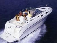 Solma Yachtcharte Mallorca Sundancer 240