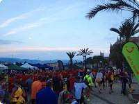 TUI MARATHON Palma de Mallorca 2014