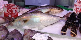 frischer Fisch zubereitet in Santa Catalina Bar d´es Mercat Palma