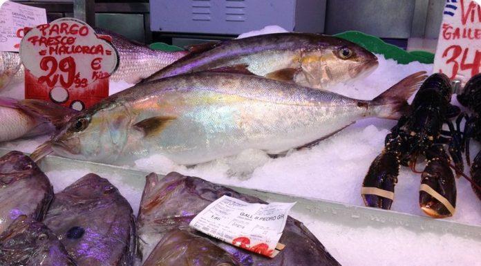 Fisch kaufen und zubereiten lassen frischer Fisch zubereitet in Santa Catalina Bar d´es Mercat Palma